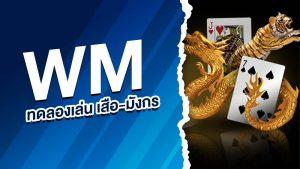 wm ทดลองเล่น เสือ-มังกร
